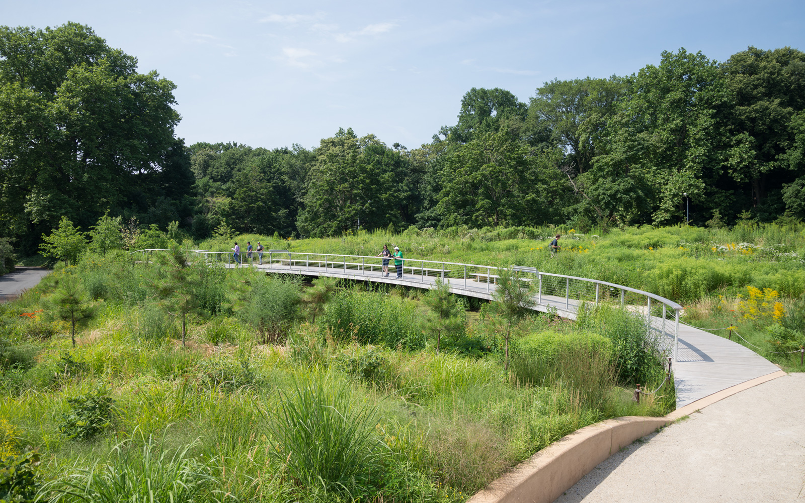 Brooklyn Botanic Garden Brooklyn Ny Siteworks Construction Management And Landscape